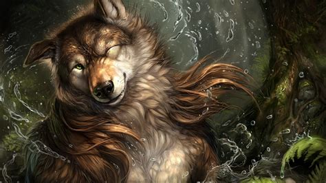 furry anthro wolf wallpapers hd desktop  mobile