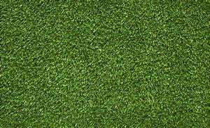 Pelouse Artificielle Pas Cher : pelouse artificielle pas cher engrais pelouse pas cher ~ Dailycaller-alerts.com Idées de Décoration