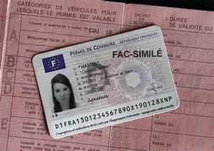 Déclaration De Perte Du Permis De Conduire : tous les secrets du permis probatoire l 39 argus ~ Medecine-chirurgie-esthetiques.com Avis de Voitures