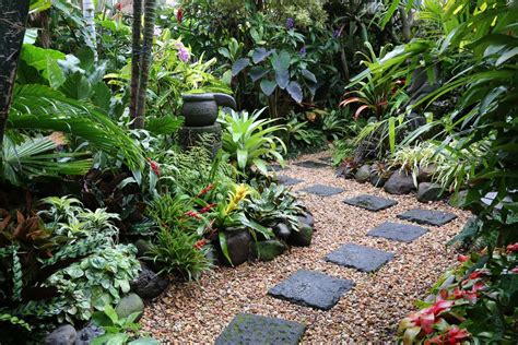 tropica garden tropical garden image gallery dennis hundscheidt