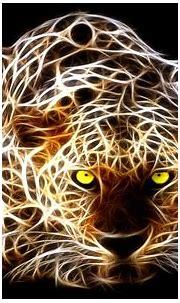 amazing   Tiger wallpaper, Tiger art, Leopard wallpaper