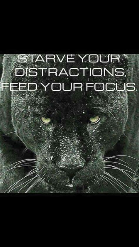 starve  distractions feed  focus warrior