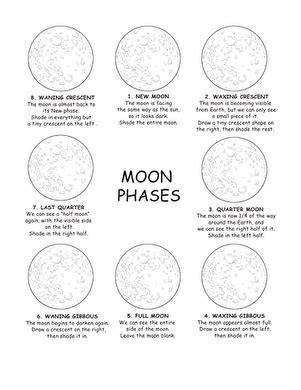 Identifying The Moon's Phases  Worksheet Educationcom