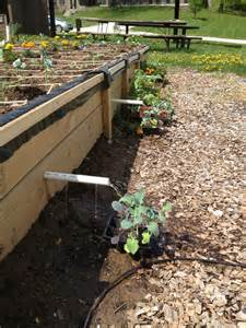 Vegetable Garden Raised
