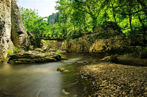 Nature Of Veliko Tarnovo In Bulgaria Coast Water
