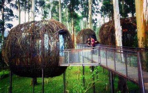 dusun bambu lembang wisata  bandung