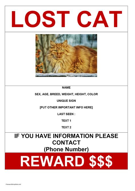 Missing Cat Poster Sample Archives  Freewordtemplatesnet. Benefit Basket Ideas. Employee Development Plan Template. Graduation Gifts For Niece. Graduation Caps For Sale. Thanksgiving Food Drive Flyer. Certificate Of Appreciation Template. Study Guide Template Microsoft Word. Cool Room Designs