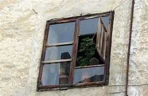Pflanzen Für Balkon : fenster in graub nden mit pelargonium crispum ~ Sanjose-hotels-ca.com Haus und Dekorationen