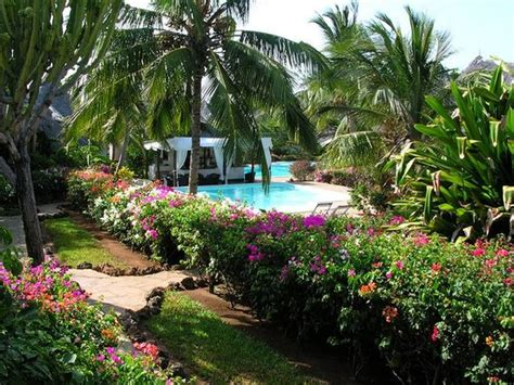dorado cottage popular hotels in malindi tripadvisor