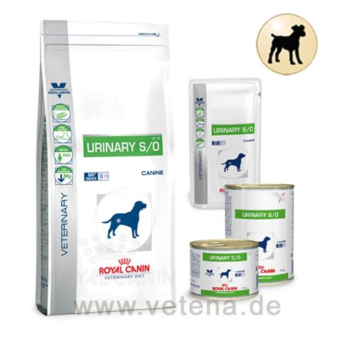 royal canin anallergenic hund royal canin urinary s o hund g 252 nstig bei vetena de
