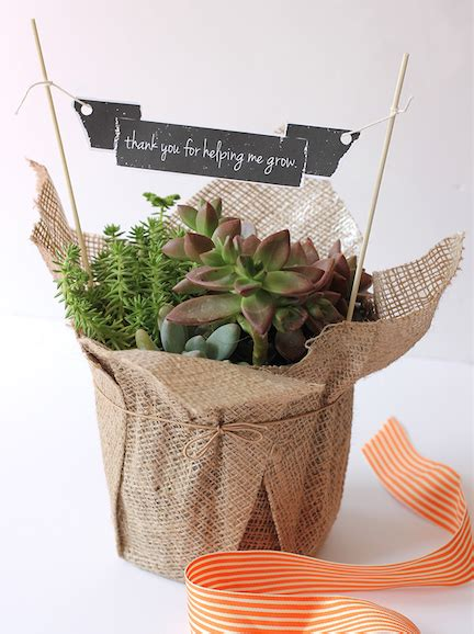 teacher appreciationgardenplant gift ideas plant pot