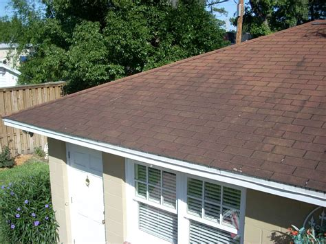 roof cleaning service jacksonville fl coast home pros