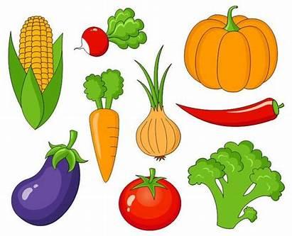 Vegetables Clip Veggies Clipart Corn