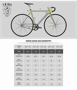 Tribe Bicycle Co  - Track Series
