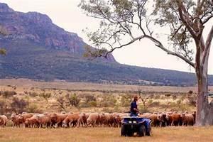 Bruttoinlandsprodukt Berechnen : 10 fakten ber australien ~ Themetempest.com Abrechnung