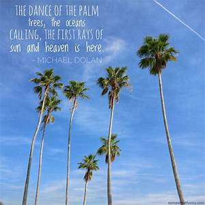 The dance of th... Inspiring Palm Tree Quotes