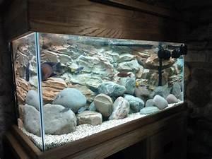 Süßwasserfische Fürs Aquarium : 3d rock background aquariums pinterest aquarium ~ Lizthompson.info Haus und Dekorationen