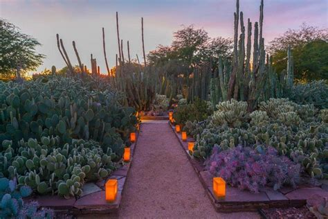 gardens of scottsdale scottsdale things to do 10best attractions reviews