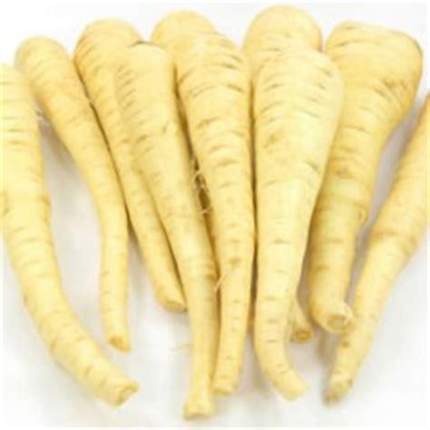 what is horseradish made from horseradish cornell vegetable program cornell university cornell cooperative extension