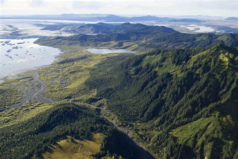 Seeing the value of the forest in the trees: Chugach ...