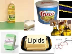 home design exles lipids