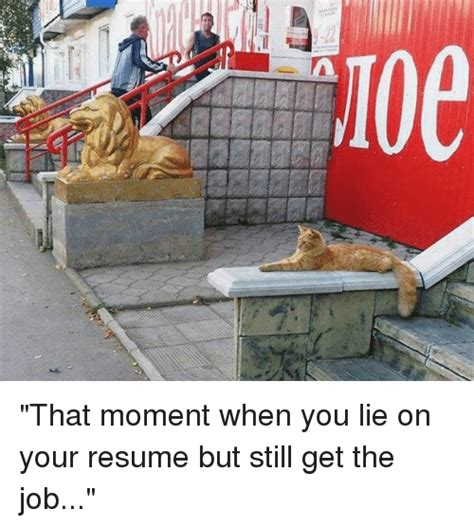 Always Lie On Your Resume by Resume Memes Of 2016 On Sizzle Memes