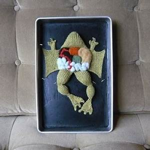 Knitted frog dissection / Boing Boing