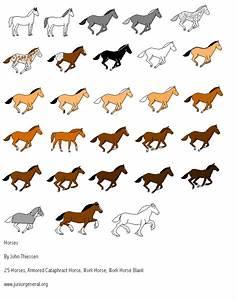 Lockwood Horses  Horse Colors