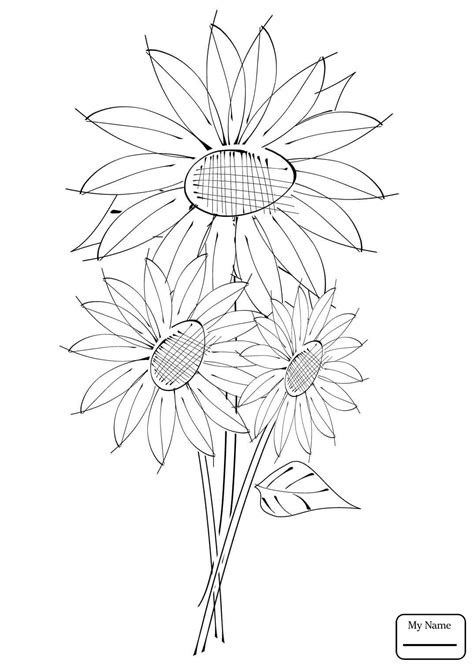 Sunflowers Drawing At Free For Personal