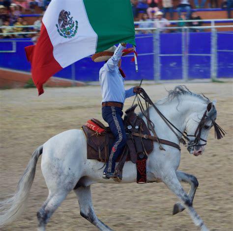 mexican horse horses equestrian
