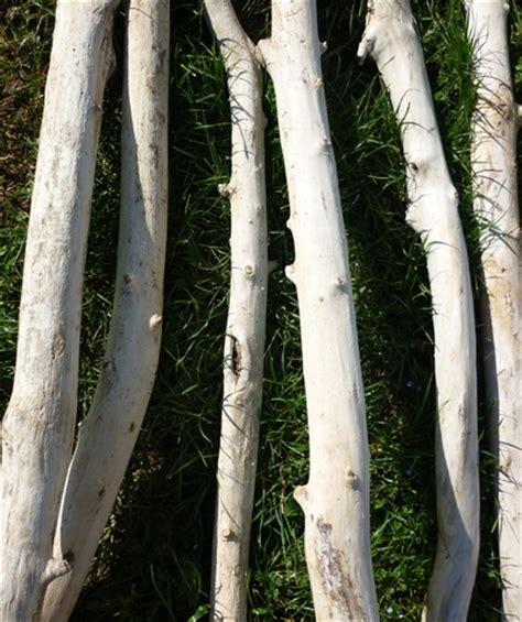 branche de bois flotté branche de bois flott 233 de 1m70 224 2m de 5cm 224 7cm de diam 232 tre