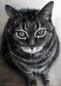 drawings of cats custom cat drawing from your photo 8x10 realistic