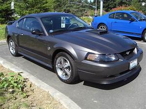 Dark Shadow Gray 2004 Mach 1 Ford Mustang Coupe