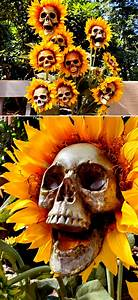 Cheap, And, Easy, Halloween, Decoration, Ideas