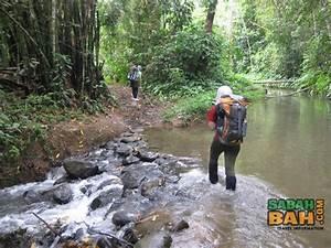 Salt Trails - Crocker Mountains Jungle Trekking - SabahBah.com