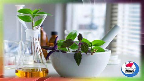 aloe vera uso interno como hacer preparados caseros con plantas o hierbas