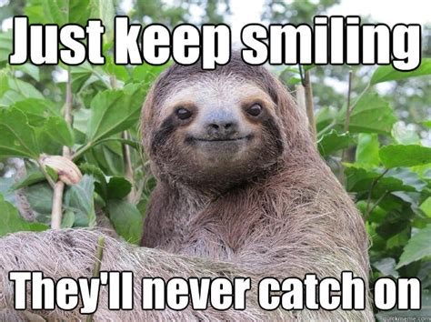 Keep Smiling Meme - smiling sloth