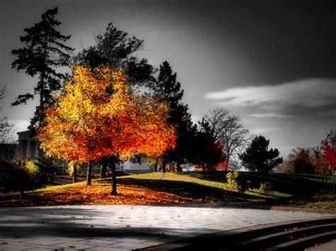 Fall Selective Coloring