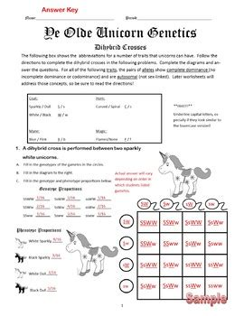 Dihybrid Cross Worksheet Worksheets For All  Download And Share Worksheets  Free On