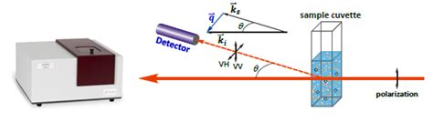 dynamic light scattering analysis of particles in media by dynamic light