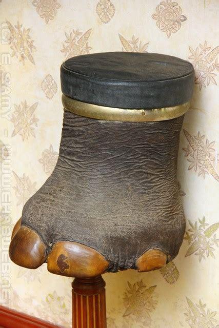 elephant leg stool  bangalore palace