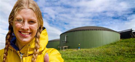 Альтернативная энергия и варианты её применение биотопливо. виды и типы экологического топлива