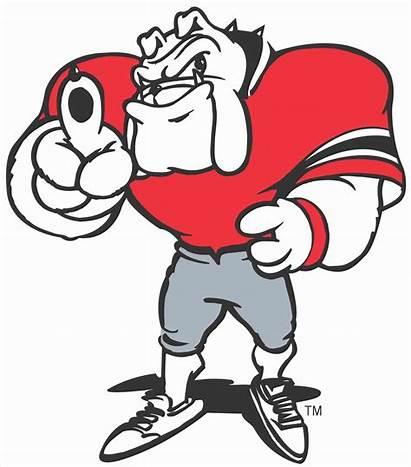 Bulldog Georgia Mascot Bulldogs Cartoon Clipart Logos