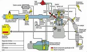 A Diagram Of A Fuel System