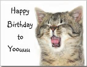 happy birthday cats happy birthday to you with cat image
