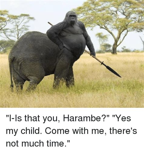 Dank Harambe Memes - i is that you harambe yes my child come with me there s not much time time meme on sizzle
