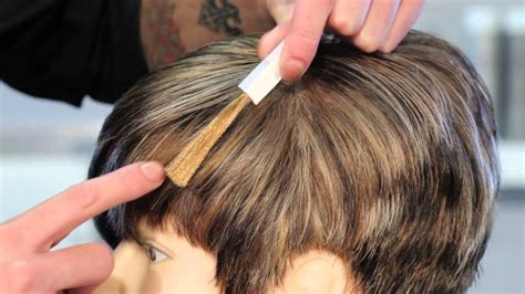 cover gray  highlights  light brown hair