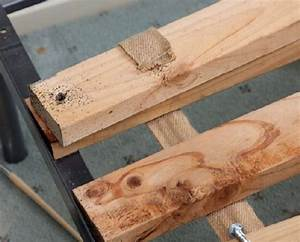 bed bugs how to get rid of bed bugs bed bugs in perth With bed bugs in wood