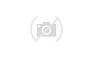 Flowers Like Peonies