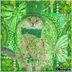 Cute Cat Happy St. Patricks Day! Pictures, Photos, and ...
